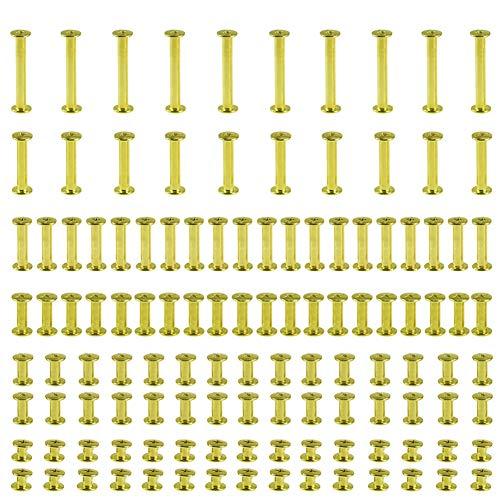 120 Satz Chicago Binding Screws Assorted Kit 6 Größen Metall Runde Kreuzkopfbolzen Schraube Beiträge Nagel Rivet Chicago Button für DIY Leder Dekoration Buchbinden (golden)