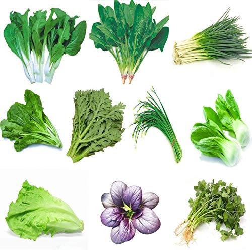 Semi di ortaggi biologici cinesi verdi da orto 10...