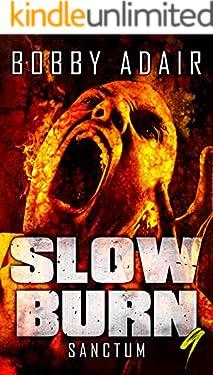 Slow Burn: Sanctum, Book 9