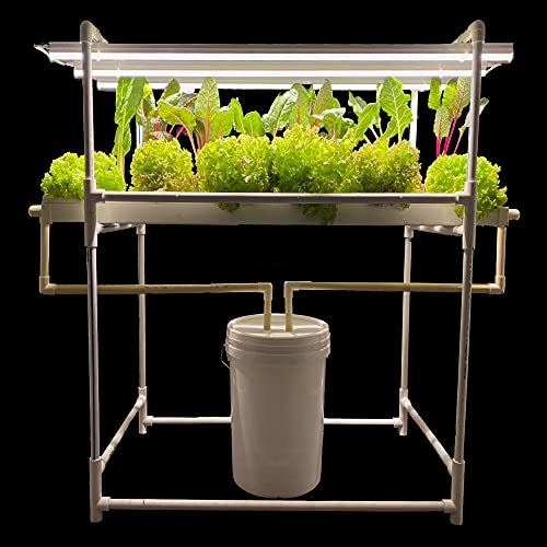 City Greens Hydroponics Kit for Home Indoor NFT Hydroponic System with Full Spectrum Grow Lights - 24 Planter Set