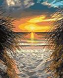 Pintar por Numeros Adultos Atardecer En La Playa Pintura por Números con Pinceles y Pinturas Decoraciones, DIY Conjunto Completo de Pinturas para el Hogar (40x50cm, Sin Marco)