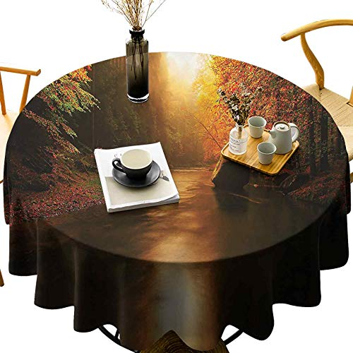 Lightweight Round Tablecloth Machine Washable Serene Autumn Forest Sun Diameter 36 inch Great for Restaurant, Parties, Holiday Dinner, Wedding