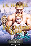 Mountain Bear's Baby (Silvertip Shifters Book 2)