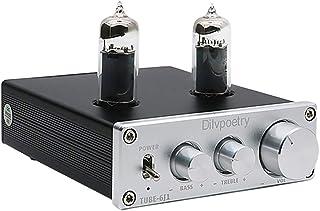 Dilvpoetry TUBE-6J1 Mini Vacuum Tube Amplifier HiFi Audio Tube Preamplifier Preamp NE5532P Chips Desktop Amp(Silver)