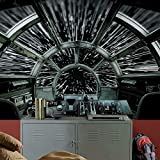 RoomMates RMK11458M Star Wars Millennium Falcon Peel and Stick Wallpaper Mural - 10.5 ft. x 6 ft.