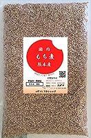 もち麦  500g 熊本産
