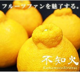 【 熊本県産 】不知火柑 ( デコポンと同品種 ) (箱込 約2kg(5~10玉))