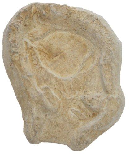 wasserkaskaden Extension pour Cascade Eder, Beige/Brun, 53 x 40 x 8 cm