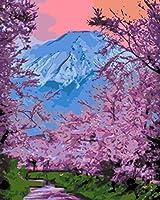 FDHDFH 子供のための番号キットによるDIY油絵ペイント初心者16x20インチキャンバスウォールアートアートワーク/桜/ブラシで描-装飾ギフト(フレームなし)