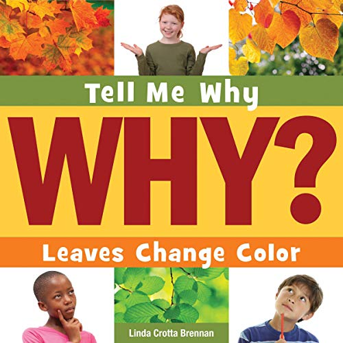 Leaves Change Color  By  cover art