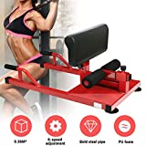 Enow Sissy Squat Machine, 3-in-1 Multifunctional Fitness Functional Core Workout Training Equipment with Deep Sissy Squat, Leg Exercise, Ab Workout for Home Cardio Gym Workout