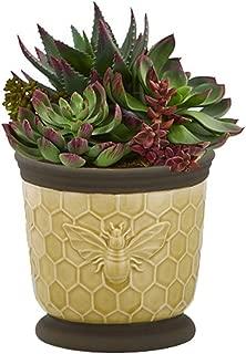 Beehive Planter Succulent Holder Bumble Bee Figure Plant Stand Cactus Herb Garden Decorative Flower Pot Terracotta Indoor Cachepot Home Corner Patio Window Herb Container
