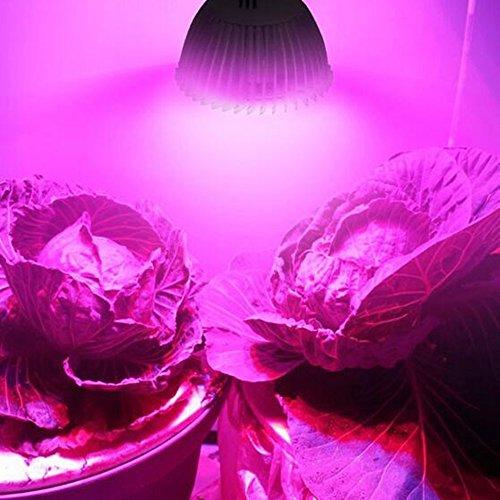 Viktion LED Pflanzenlampe GU10 LED Pflanzenlicht Growlicht LED-Pflanzen-Wachstumslampe 8W 9W 10W für Obst Gemüse Pflanzen Innen-Gewächshaus Blumen (8)