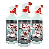 Spray anti araignée