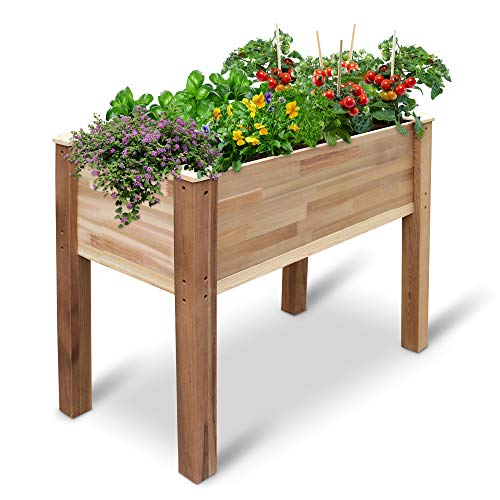 Jumbl Raised Canadian Cedar Garden Bed | Elevated Wood Planter for Growing Fresh Herbs, Vegetables, Flowers, Succulents & Other Plants at Home | Great for Outdoor Patio, Deck, Balcony | 34x18x30""