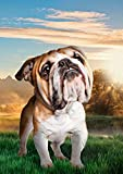 DIY de madera Puzzles Paisaje de Londres grandes adultos 1000 piezas Perro Mascota Bulldog Photoshop Animales Ilustración Imagen de la decoración de la habitación Regalos de Navidad