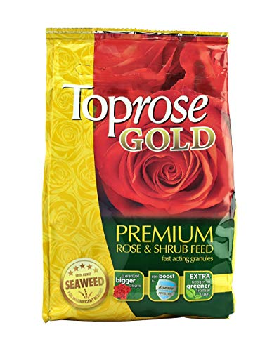 Rose Care Toprose Gold Premium Rose and Shrub Feed, 1 kg