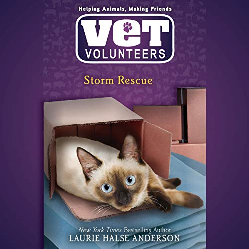 Storm Rescue audiobook cover art