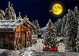 Gofission - Kit de diamantes de imitación, diseño de luna, diseño de muñeco de nieve, diseño de árbol de Navidad con números, 16 x 30 cm (Navidad)