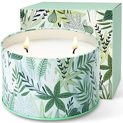 LA BELLEFÉE Velas Perfumadas Grande Arománticas Decorativas Aroma Té Blanco Dos Pabilos Aromaterapia 100% Cera de Soja Set de Vela Aliviar el Estrés y Relajación con Aromaterapia.