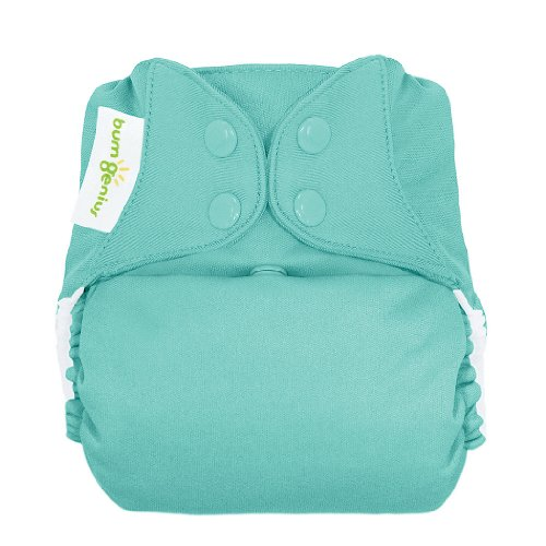bumGenius Freetime All-in-One One-Size Snap Closure Cloth Diaper (Mirror)