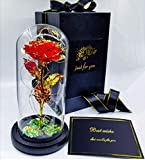 TangTown 24K Galaxy Rose Flower,Beauty and The Beast Rose,The Best...