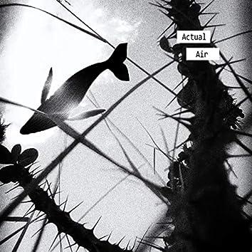 Kanna Dey X Digg Deep // Actual Air