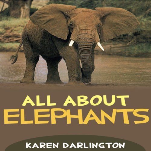 All About Elephants cover art