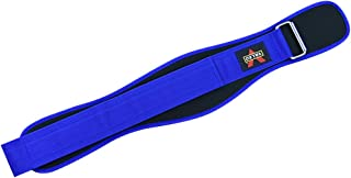 BESPORTBLE Weightlifting Belt Weight Belt For Support During Powerlifting Cross Training Squats Weights (Blue, L)