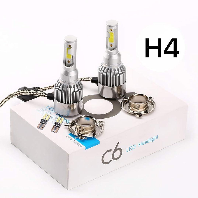 FYSZ H4 Car 12V 55W 6000K LED Bulbs Super Bright White Fog Lights High Power Headlight Lamp Light Source,White (Extra T10 4014 24 car light)