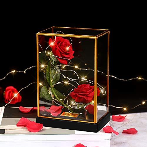 shirylzee Ewige Rose im Glas, Die Schöne und das Biest Rose in Quadrat Glaskuppel Künstlich Rosenbox mit LED-Licht Geschenk für Party Hochzeit Dekor Valentinstag Muttertag Jubiläum (Rot)