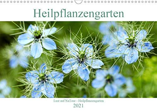 Lust auf NaTour - Heilpflanzengarten (Wandkalender 2021 DIN A3 quer)