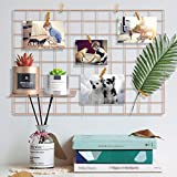 Pulatree Grid Photo Wall, Wire Wall Grid Panel for Photo Hanging Display Metal Grid Wall Decor Organizer Mesh Panels Display Wall Storage 25.6 x 17.7inch - Rose Gold