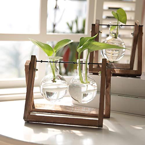 Athemeet Hydroponic Glastöpfe, Vermehrungsstation,Hydroponic Pflanzen, Tischpflanzen, Hydroponic Glass Planter Bulb Vase mit Wooden Stand Tray Tabletop Desk Decor (Single-Birne)