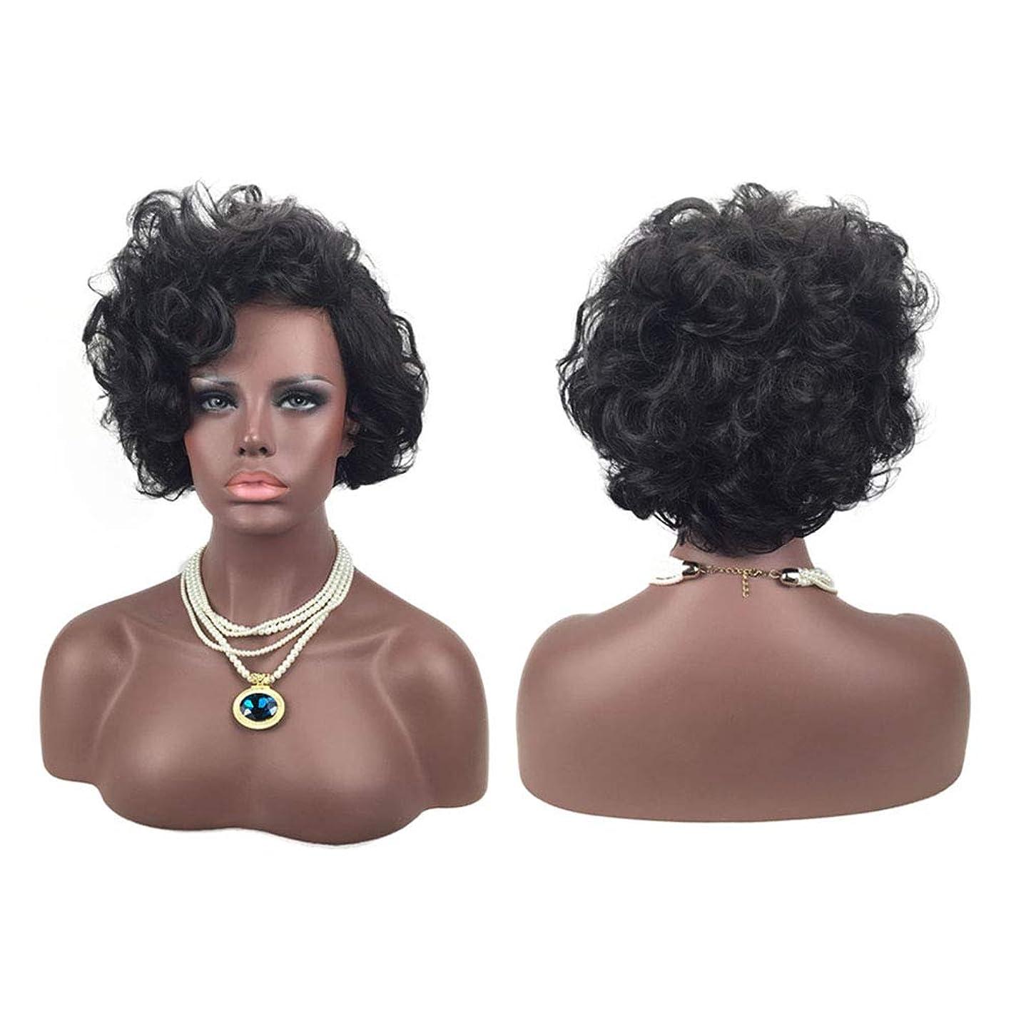苗能力シャワーヨーロッパとアメリカの自然な絶妙な弾性ネットカーリーかつらカバーに適した女性の黒の短い髪のかつら