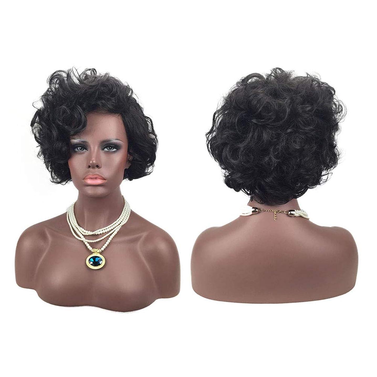 挨拶ゼリー横にヨーロッパとアメリカの自然な絶妙な弾性ネットカーリーかつらカバーに適した女性の黒の短い髪のかつら