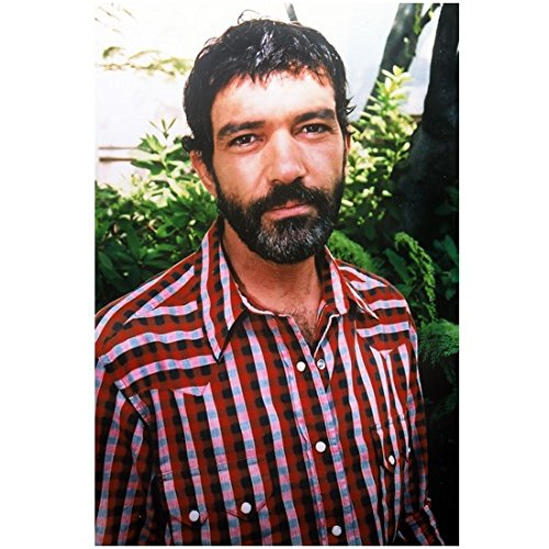 Antonio Banderas 8 x 10 Photo Full Beard Red, White & Blue Checked Shirt Outside kn