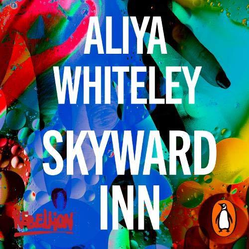 Skyward Inn cover art