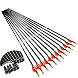 Linkboy Archery Carbon Arrows Hunting Practice Target Removable Points 30 inch Shaft Vanes Arrows for Youth Adults Compound Recurve Long Bow Spine 300 Black Pack of 12