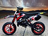 Dirtbike Coyote 49cc 10' Crossbike Pocket Minicross Motorcross Grün