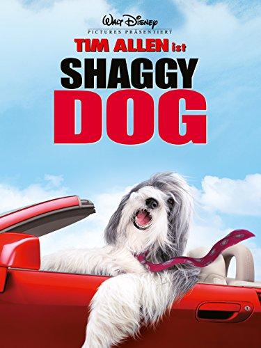 Shaggy Dog − Hör mal wer da bellt