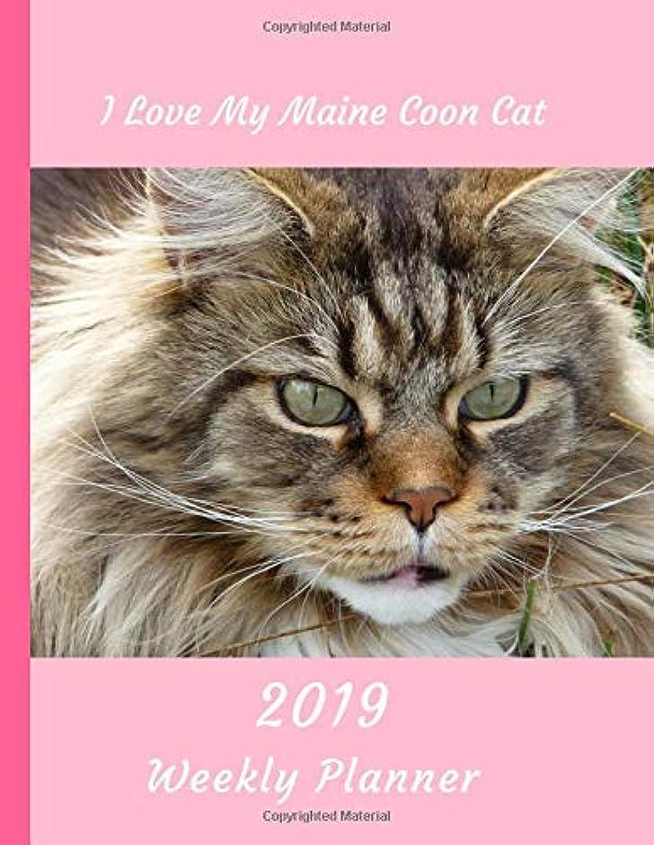 ホースジョセフバンクスゼロI Love My Maine Coon Cat 2019 Weekly Planner: Large Size 8.5x11 Organizer Diary with Goal Setting & Gratitude Sections (Love All Cats)