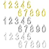 BEADNOVA Number Charms Alloy 0-9 Charms Assorted For Jewelry Making And DIY (Rhodium/Gold/Silver, 30pcs)