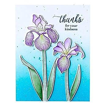Best flower stamp and die sets Reviews