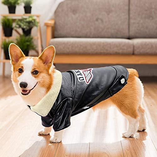JINAN Coole Hunde-Lederjacke für den Winter, warm, Bulldoggen-Kleidung für kleine und mittelgroße Hunde (Farbe: Gelb, Größe: L)
