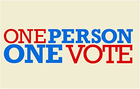 Amazon Com One Person One Vote Political Cool Wall Decor Art Print Poster 12x18 Posters Prints