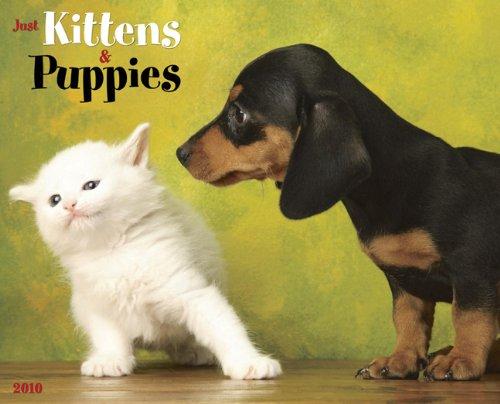Just Kittens & Puppies 2010 Calendar (Kittens 2010 Wall Calendar)