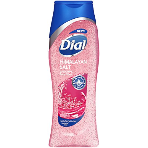 Dial Body Wash Himalayan Salt 16 Ounce Enriching (473ml) (Pack of 3)