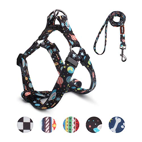QQPETS Dog Harness Leash Set, Adjustable Heavy Duty No Pull Harnesses for Large Breed Dogs, Back Clip, Anti-Twist, Perfect for Walking (L(23