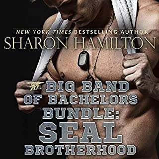 Big Band of Bachelors Bundle: SEAL Brotherhood Series cover art